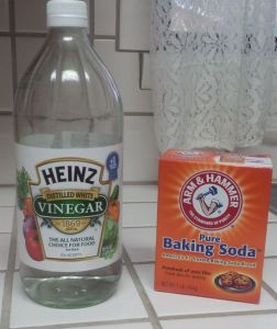 Homemade Drano Recipe