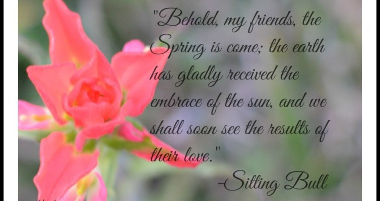 Sitting Bull Spring Quote