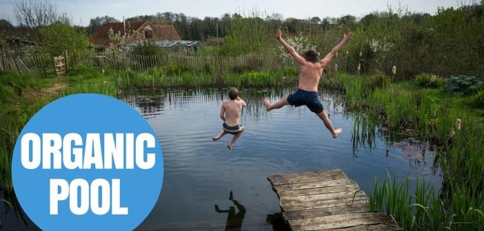 Man's DIY Natural Swimming Pool Makes Waves Across The Globe