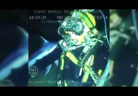 Underwater video captures lucky escape as swordfish spears diver