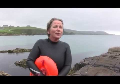 Shetland wild swimmer's close encounter with bull orca