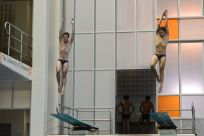 KNOXVILLE, TN - August 5, 2014: Synchro Goodwin/Cifelli during the 2014 USA Diving Age Group and Junior National Event at Allan Jones Aquatic Center in Knoxville, TN. Photo By Matthew S. DeMaria