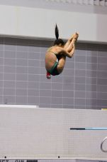KNOXVILLE, TN - July 31, 2014: Madeline Wiese dives from the 1 meter springboard during the 2014 USA Diving Age Group and Junior National Event at Allan Jones Aquatic Center in Knoxville, TN. Photo By Matthew S. DeMaria