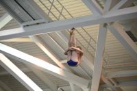 KNOXVILLE, TN - July 31, 2014: Max Showalter dives of the Platforms during the 2014 USA Diving Age Group and Junior National Event at Allan Jones Aquatic Center in Knoxville, TN. Photo By Matthew S. DeMaria