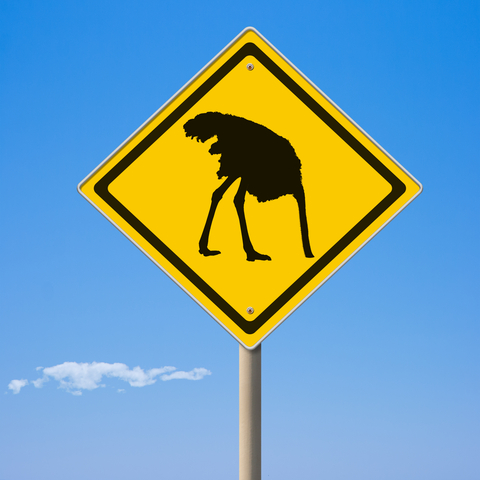 © Andreykuzmin  Dreamstime com - Caution Ostrich Ahead Yellow Road Sign Photo
