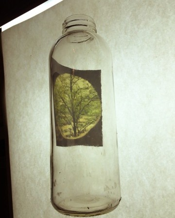 Glass Bottle #4 | One of A Kind |Corinne Adams