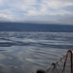 Oljehav på vei mot La Palma