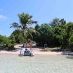 Paradis på Green Island