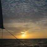Fint på havet, ass. v3.0. Bomullsåker og solnedgang.