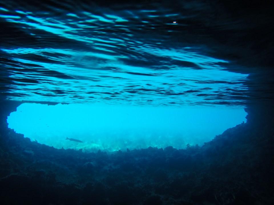 En barracuda på vei forbi James Bond hula ved Staniel Cay