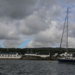 Spinnvill på plass i Skottland utenfor whiskeydistilleriet Ardbeg på Islay.