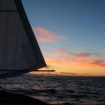 Herlig norsk julikveld varmet oss etter kjølige seilaser i Irland og Skottland