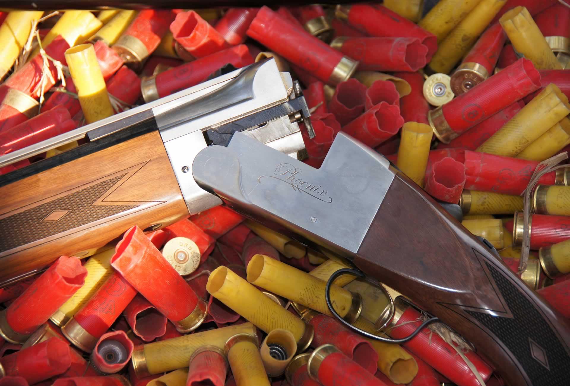 shotgun-shells2