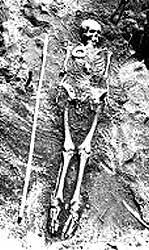 Skeleton from Pennsylvania