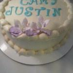Sugar_Free_Frosting_Party_Cake_Sydneys_Sweets