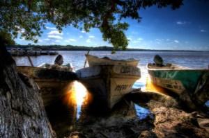 bateau mexique lagune mangrove HDR