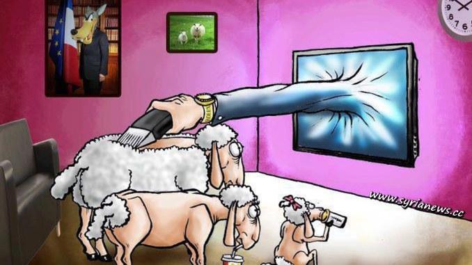 Sheeple Family