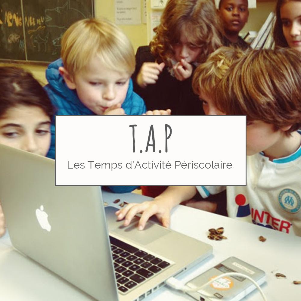 portfolio-TAP