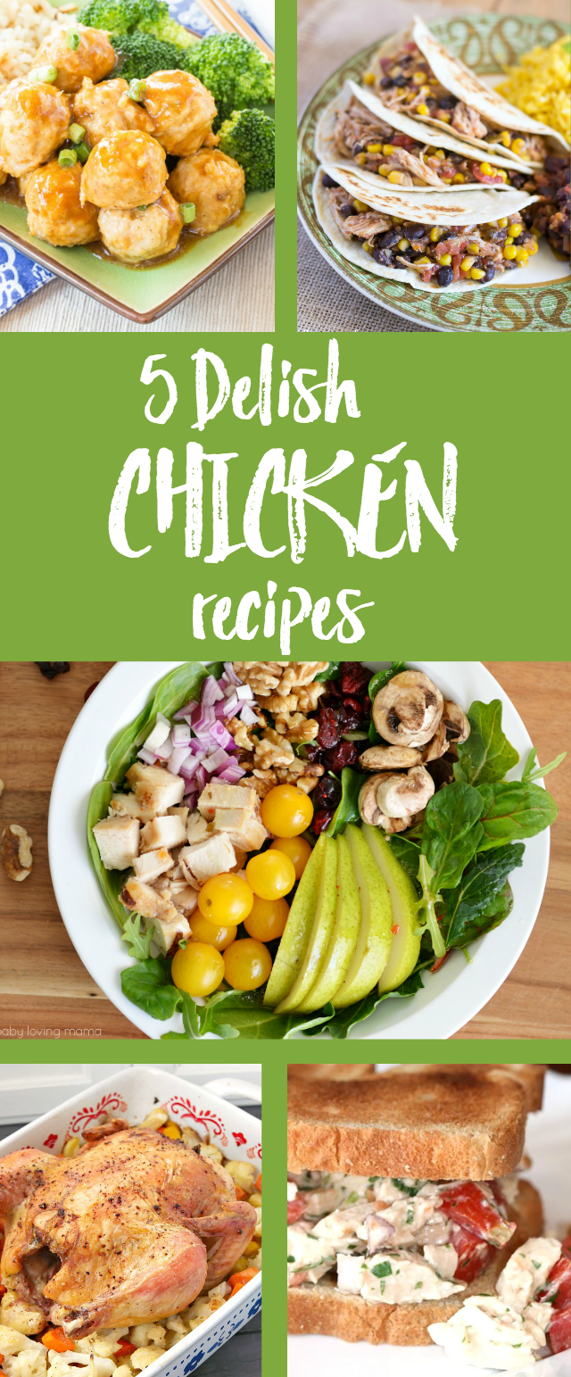 5 Delish Chicken Recipes... easy to make and family friendly! Tabler Party of Two - http://www.tablerpartyoftwo.com/delicious-chicken-recipes