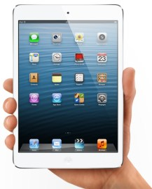 iPad Mini (et main d'adulte)