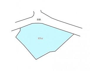 地形図244坪1