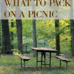 What to Pack on a Picnic