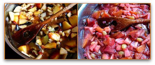 recipe for making fruit chutney