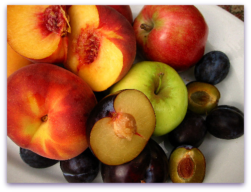 fresh fruit, peaches, plums, apples and prunes ready for the chutney pot