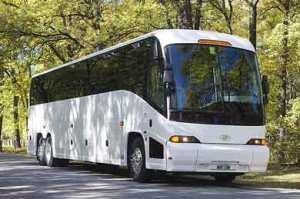 50 Passenger Charter Bus