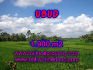 Murah ! Tanah di UBUD Bali Dijual Rp 1.650.000 / m2 - TJUB403