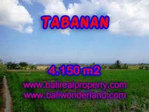 TANAH MURAH DI TABANAN BALI TJTB137 - INVESTASI PROPERTY DI BALI
