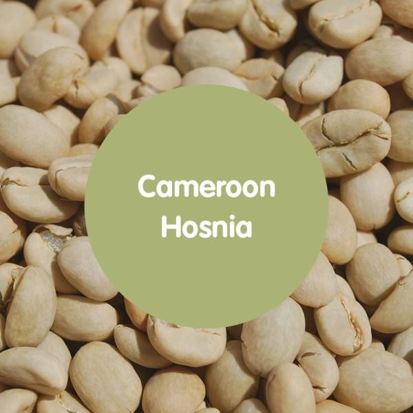 Cameroon Hosnia