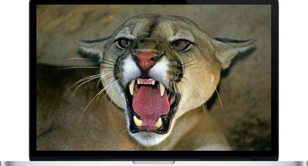 2013 MacBook Pro Retina Benchmarks