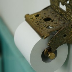 toilet paper principle