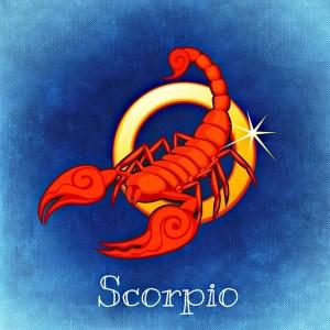 scorpio-759377_640