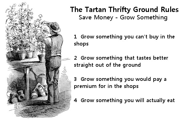 The Tartan Thrifty Ground Rules