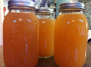Fresh apple pectin.