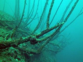 Unterwasser, Tauchen im Kreidesee Hemmoor