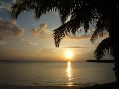 , Vilamendhoo, Ari Atoll, Tauchen auf den Malediven
