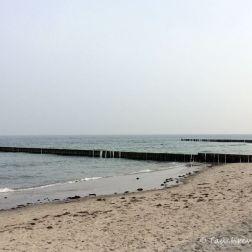 Ostsee Nienhagen Strand, Tauchen in der Ostsee, Tauchen in Mecklenburg-Vorpommern