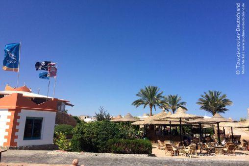 ORCA Dive Club, Tauchen in Safaga, Tauchen in Ägypten