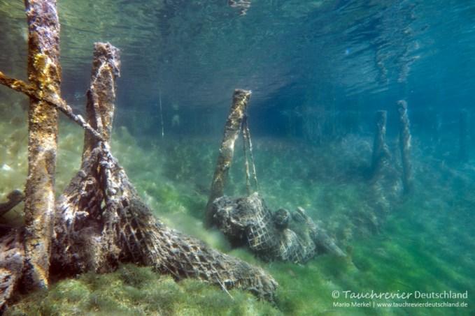 Unterwasserwelt, Tauchen im Kreidesee Hemmoor, Tauchen in Niedersachsen