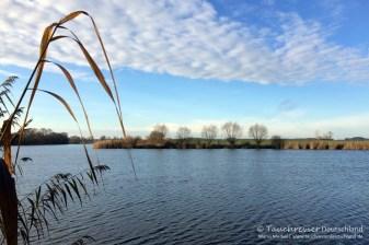 Krummer See, Tauchen im Krummer See, Tauchen in Brandenburg