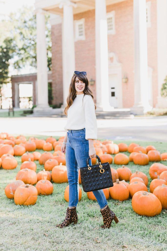 pumpkin-79_preview