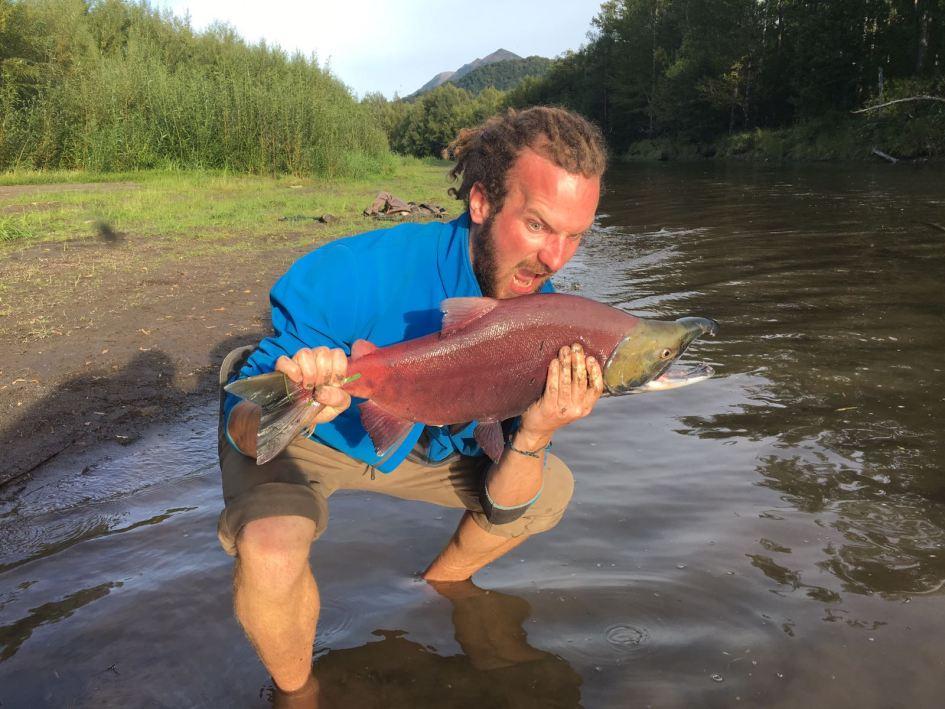 Sockeye salmon in Kamchatka