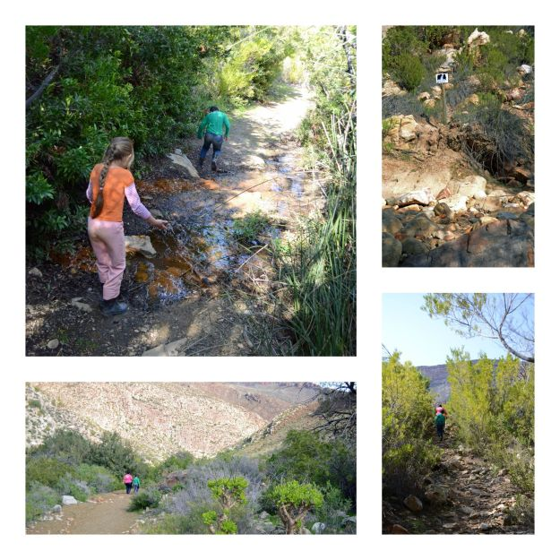 kid friendly, family travel, cederberg, mount cedar, self catering, south africa, travel, roadtrips, family