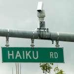 haiku road