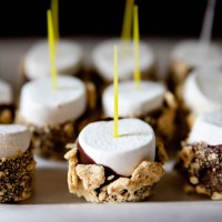 """Chocolate Covered Marshmallows - """"Smore's Pops"""""""