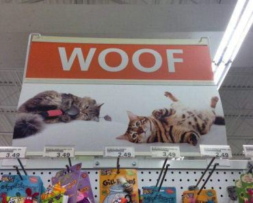 Woof ~ 27 You Had One Job Fails