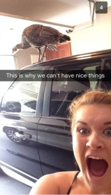 27 Funny Snapchats You'd Wished You Had Sent